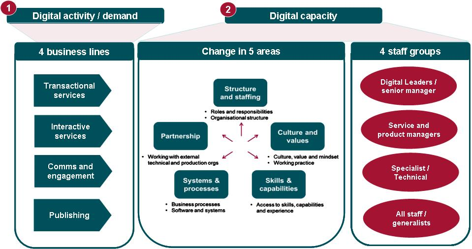 Graphic showing the BIS Digital Capability Review Analytical Framework.