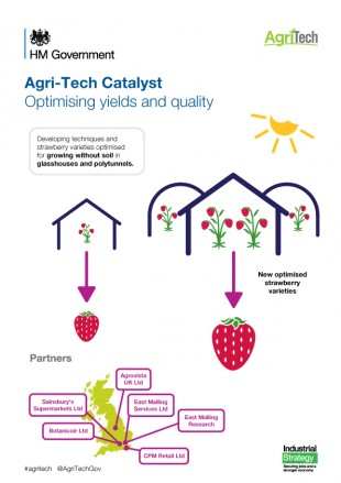 Agri-Tech Infographic