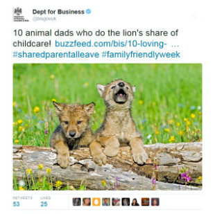 Tweet promoting a BIS Buzzfeed story on shared parental leave